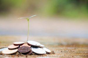 jong plantje dat uit een stapeltje geld groeit: subsidie voor de starter
